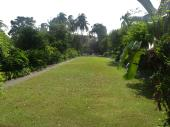 Hope Gardens, Kingston, Jamaica